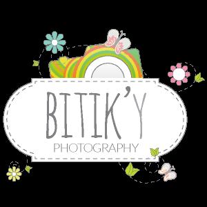 bitiky-presentation